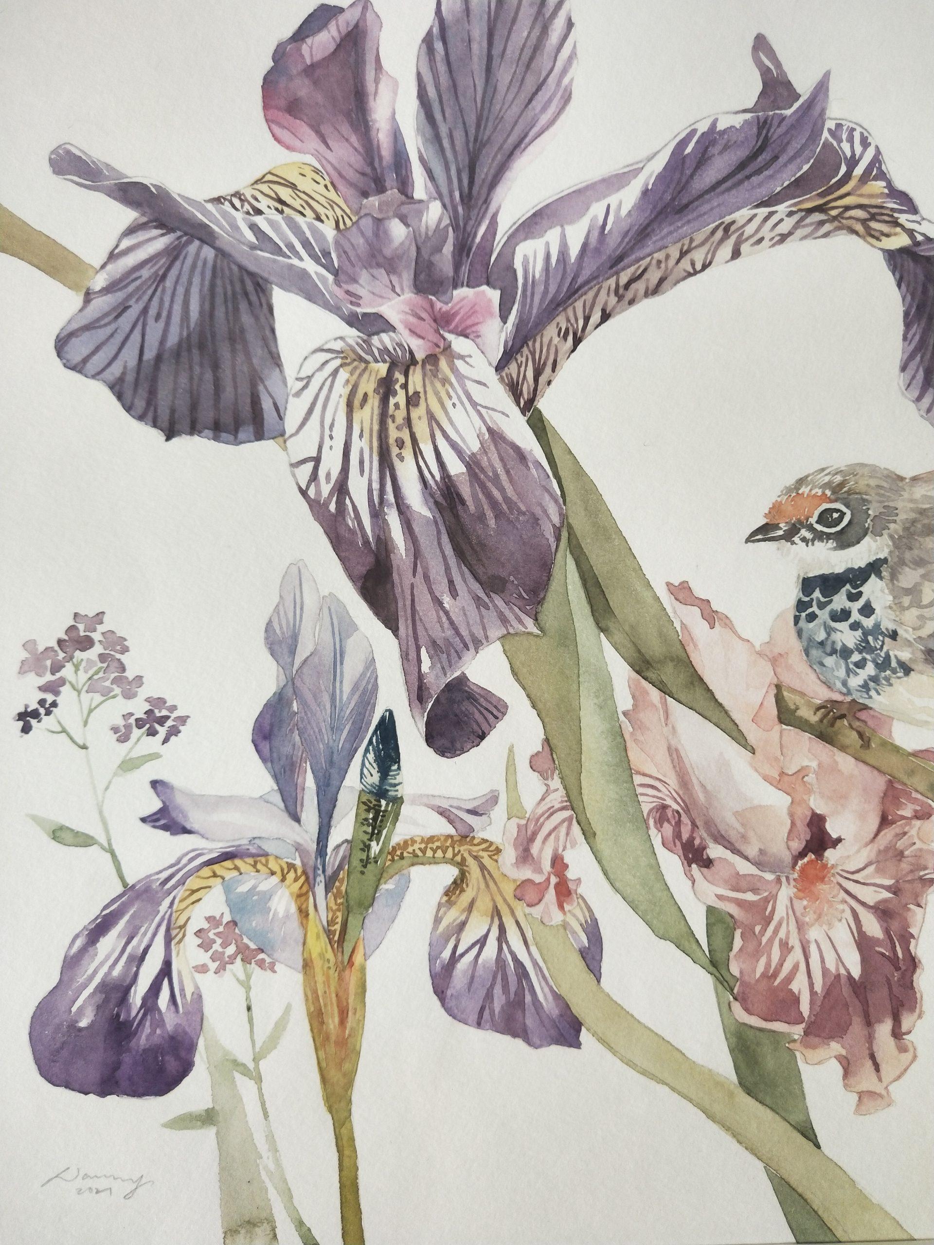 iris detail