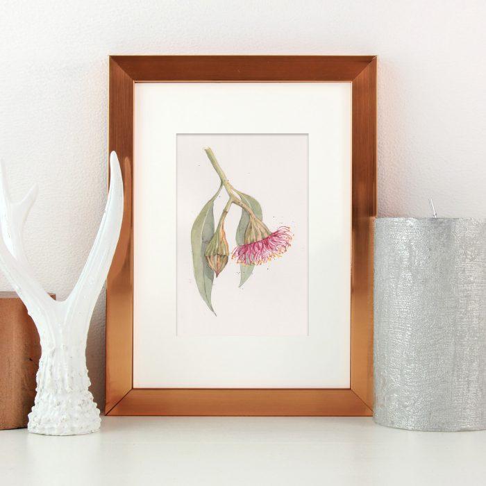 Watercolour botanical art for sale